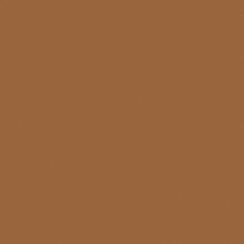 Rosco Fluorescent Lighting Sleeve/Tube Guard ( #3406 Roscosun 85N.6, 2' Long)