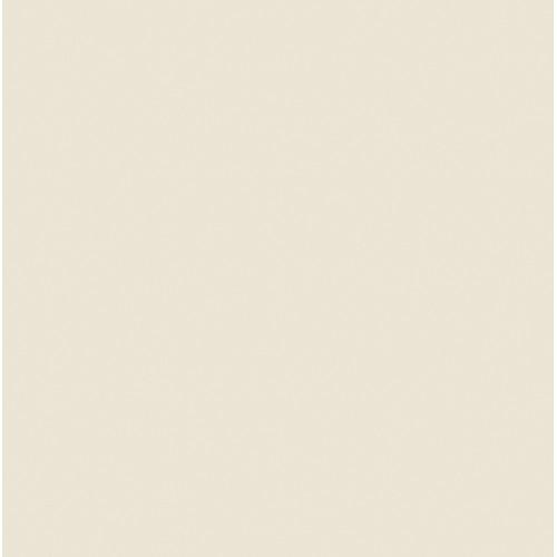 Rosco Fluorescent Lighting Sleeve/Tube Guard ( #3410 Roscosun 1/8 CTO, 2' Long)