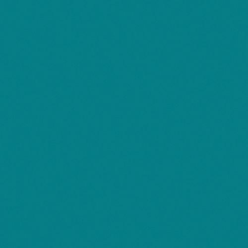 Rosco Fluorescent Lighting Sleeve/Tube Guard ( #393 Emerald Green, 2' Long)