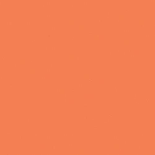 Rosco Fluorescent Lighting Sleeve/Tube Guard ( #E008 Dark Salmon, 2' Long)