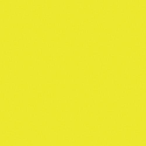 Rosco Fluorescent Lighting Sleeve/Tube Guard ( #E100 Spring Yellow, 2' Long)