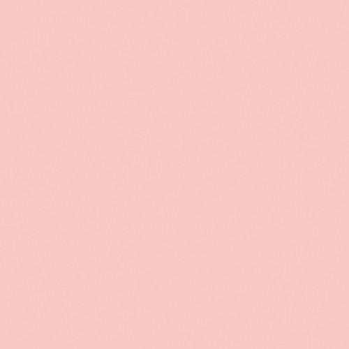 Rosco Fluorescent Lighting Sleeve/Tube Guard ( #05 Rose Tint, 3' Long)