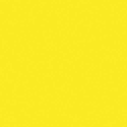 Rosco Fluorescent Lighting Sleeve/Tube Guard ( #12 Straw, 3' Long)