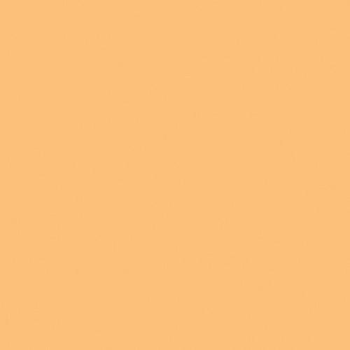 Rosco Fluorescent Lighting Sleeve/Tube Guard ( #13 Straw Tint, 3' Long)