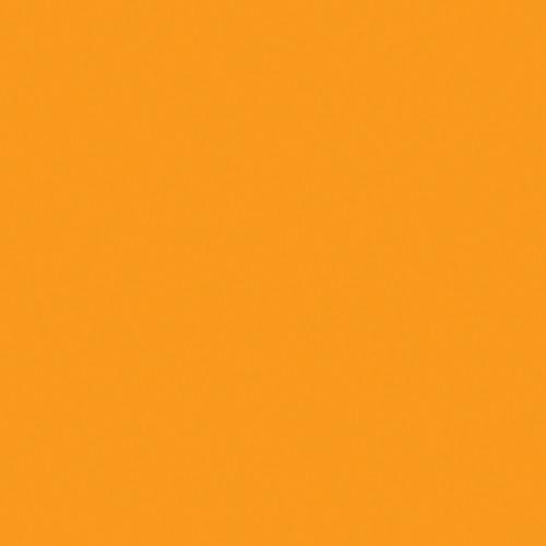 Rosco Fluorescent Lighting Sleeve/Tube Guard ( #15 Deep Straw, 3' Long)