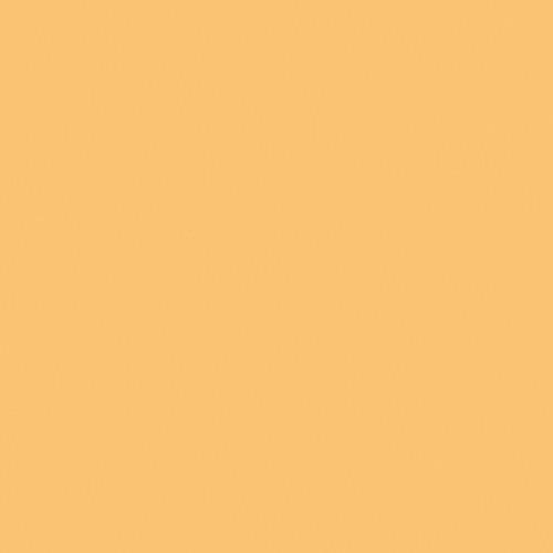Rosco #3134 Tough MT54 Fluorescent Lighting Sleeve/Tube Guard (3' Long)