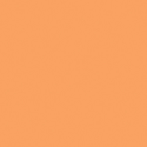 Rosco Fluorescent Lighting Sleeve/Tube Guard ( #316 Gallo Gold, 3' Long)