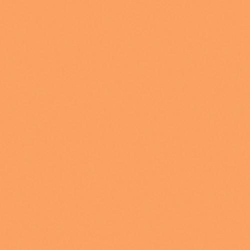 Rosco Fluorescent Lighting Sleeve/Tube Guard ( #317 Apricot, 3' Long)