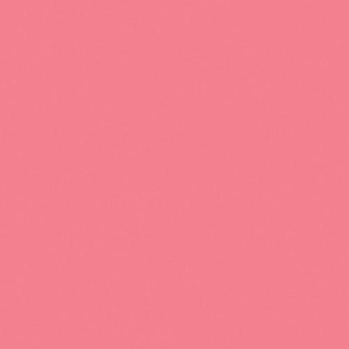 Rosco Fluorescent Lighting Sleeve/Tube Guard ( #31 Salmon Pink, 3' Long)