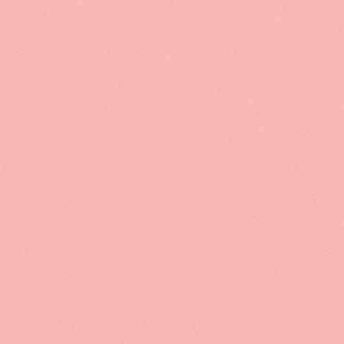 Rosco Fluorescent Lighting Sleeve/Tube Guard ( #331 Shell Pink, 3' Long)