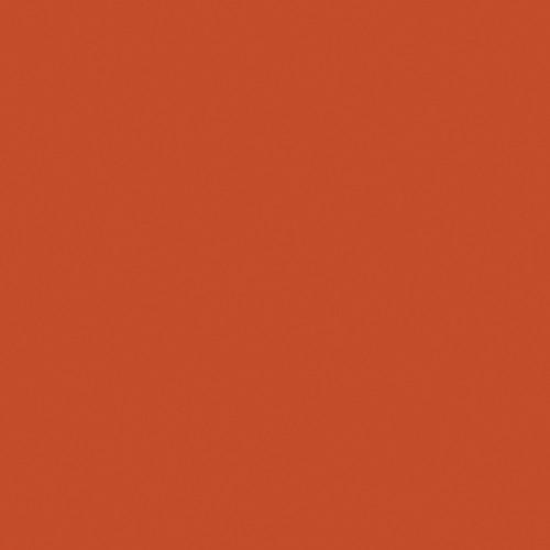 Rosco Fluorescent Lighting Sleeve/Tube Guard ( #3407 Roscosun CTO, 3' Long)