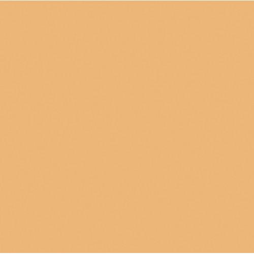 Rosco Fluorescent Lighting Sleeve/Tube Guard ( #3411 Roscosun 3/4 CTO, 3' Long)