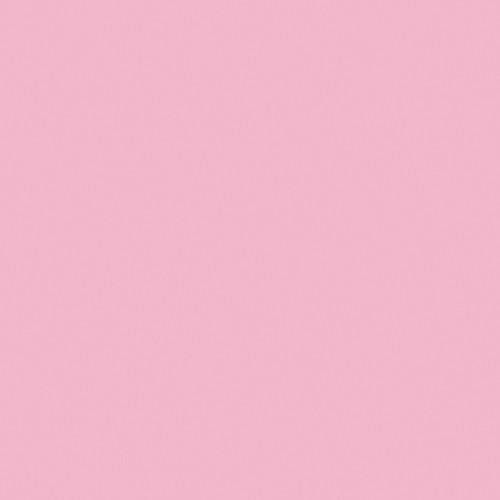 Rosco Fluorescent Lighting Sleeve/Tube Guard ( #35 Light Pink, 3' Long)