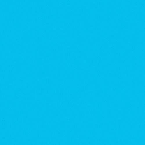 Rosco Fluorescent Lighting Sleeve/Tube Guard ( #363 Aquamarine, 3' Long)