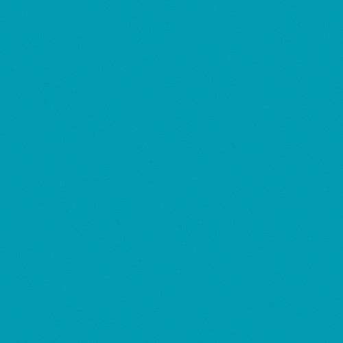 Rosco Fluorescent Lighting Sleeve/Tube Guard ( #370 Italian Blue, 3' Long)