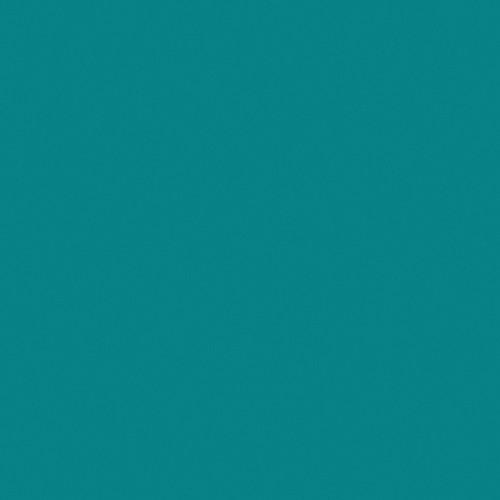 Rosco Fluorescent Lighting Sleeve/Tube Guard ( #393 Emerald Green, 3' Long)