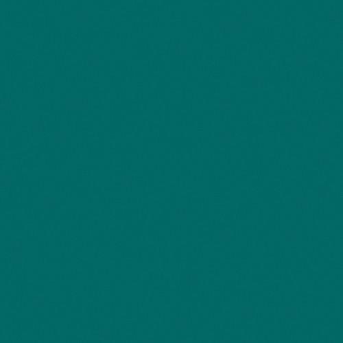 Rosco Fluorescent Lighting Sleeve/Tube Guard ( #395 Teal Green, 3' Long)