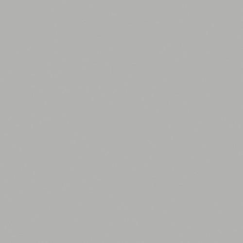 Rosco Fluorescent Lighting Sleeve/Tube Guard ( #398 Neutral Gray, 3' Long)