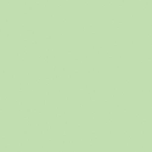 Rosco Fluorescent Lighting Sleeve/Tube Guard (CalColor #Calcolor 15 Green, 3' Long)
