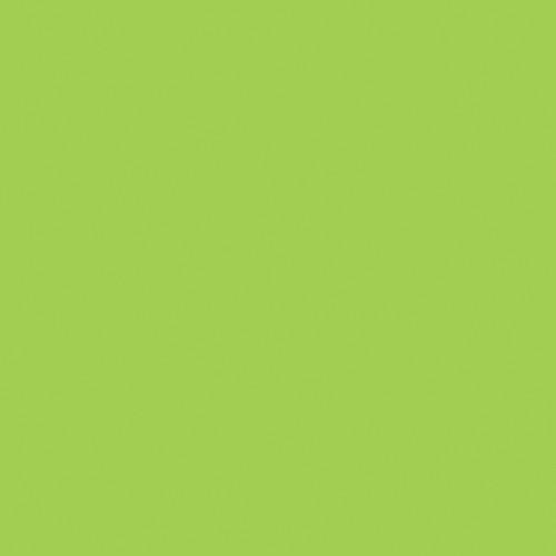 Rosco Fluorescent Lighting Sleeve/Tube Guard (CalColor #Calcolor 30 Green, 3' Long)