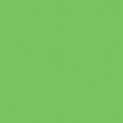 Rosco Fluorescent Lighting Sleeve/Tube Guard (CalColor #Calcolor 60 Green, 3' Long)