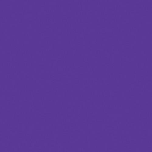 Rosco Fluorescent Lighting Sleeve/Tube Guard ( #58 Deep Lavender, 3' Long)