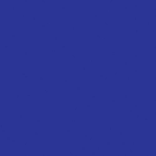 Rosco Fluorescent Lighting Sleeve/Tube Guard ( #80 Primary Blue, 3' Long)