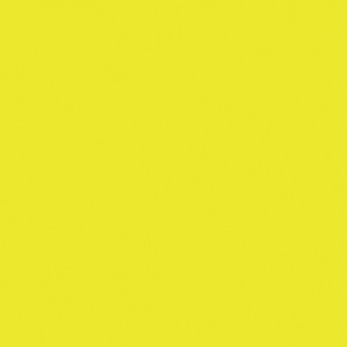 Rosco Fluorescent Lighting Sleeve/Tube Guard ( E-Colour #E100 Spring Yellow, 3' Long)
