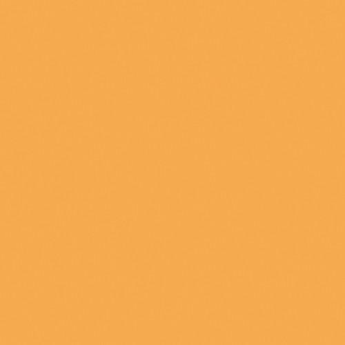 Rosco Fluorescent Lighting Sleeve/Tube Guard (#316 Gallo Gold, 3' Long)