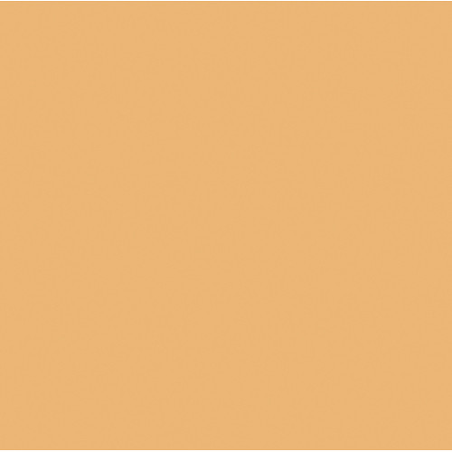 Rosco #3411 Roscosun 3/4 CTO Fluorescent Lighting Sleeve/Tube Guard (3' Long)