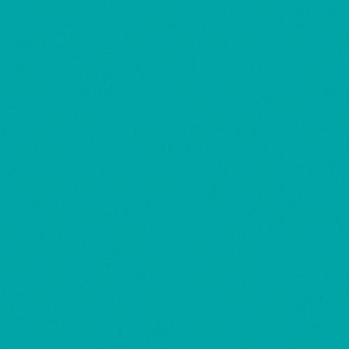 Rosco Fluorescent Lighting Sleeve/Tube Guard (#374 Sea Green, 3' Long)
