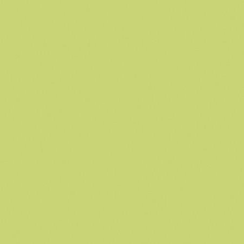 Rosco Fluorescent Lighting Sleeve/Tube Guard (#388 Gaslight Green, 3' Long)