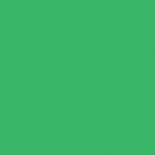 Rosco Fluorescent Lighting Sleeve/Tube Guard (#389 Chroma Green, 3' Long)
