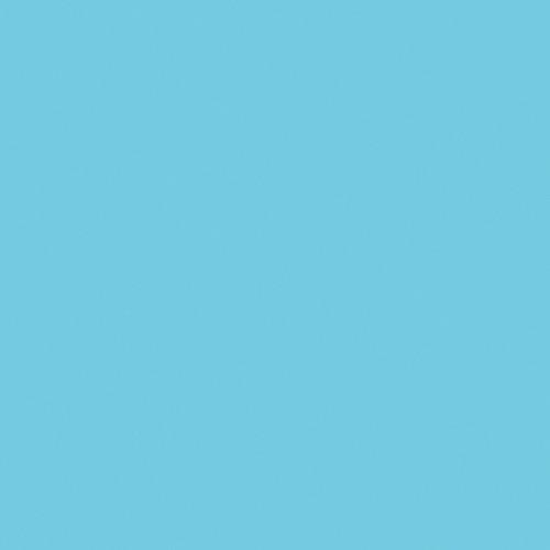Rosco Fluorescent Lighting Sleeve/Tube Guard (#66 Cool Blue, 3' Long)