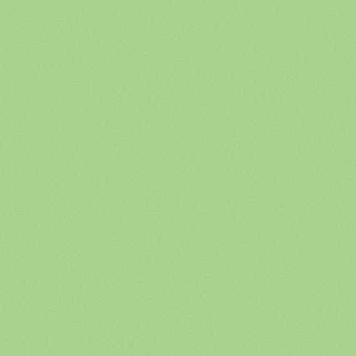 Rosco Fluorescent Lighting Sleeve/Tube Guard (#88 Light Green, 3' Long)