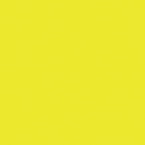 Rosco Fluorescent Lighting Sleeve/Tube Guard (E-Colour #E100 Spring Yellow, 3' Long)