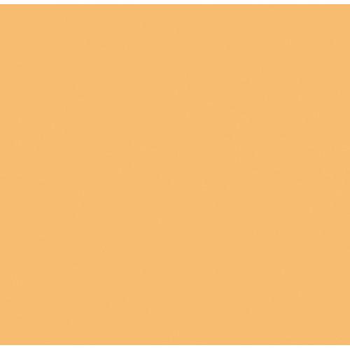 Rosco Fluorescent Lighting Sleeve/Tube Guard (#3441 Full Straw CTS ,4' Long)