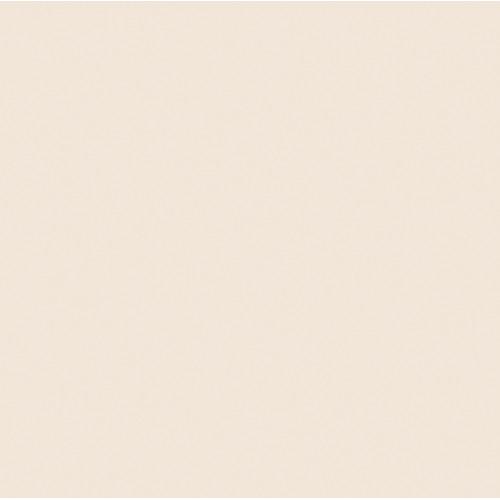 Rosco Fluorescent Lighting Sleeve/Tube Guard (#3444 1/8 Straw CTS ,4' Long)