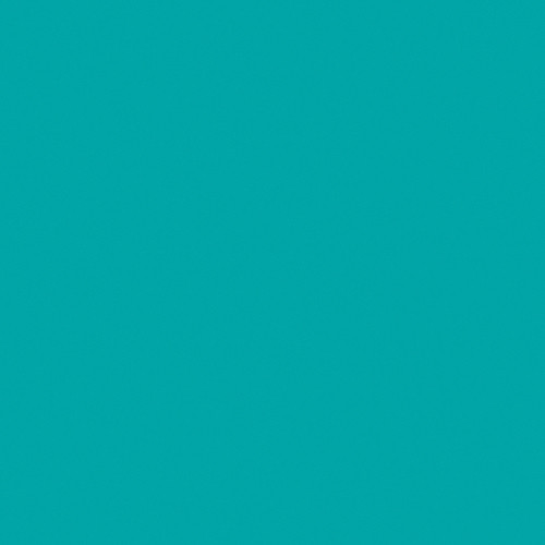 Rosco Fluorescent Lighting Sleeve/Tube Guard (#374 Sea Green ,4' Long)