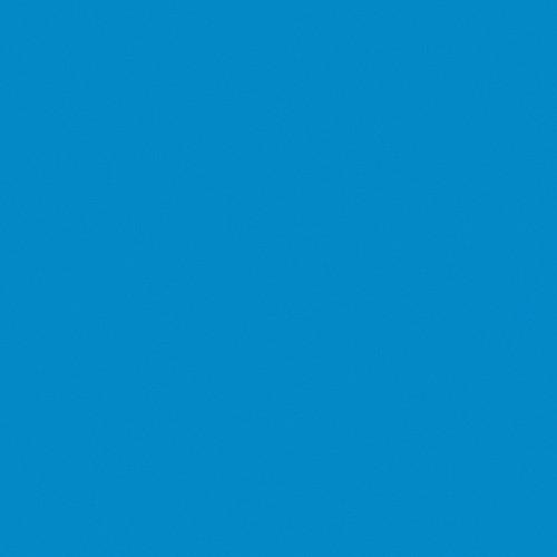 Rosco Fluorescent Lighting Sleeve/Tube Guard (#64 Light Steel Blue ,4' Long)