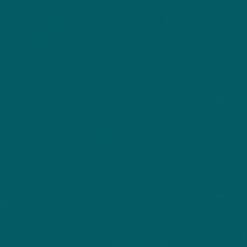 Rosco Fluorescent Lighting Sleeve/Tube Guard (#95 Medium Blue Green ,4' Long)