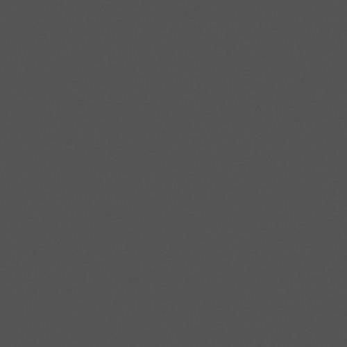 Rosco Fluorescent Lighting Sleeve/Tube Guard (#98 Medium Gray ,4' Long)