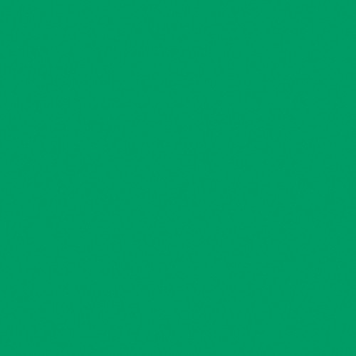 Rosco Fluorescent Lighting Sleeve/Tube Guard (#E089 Moss Green ,4' Long)