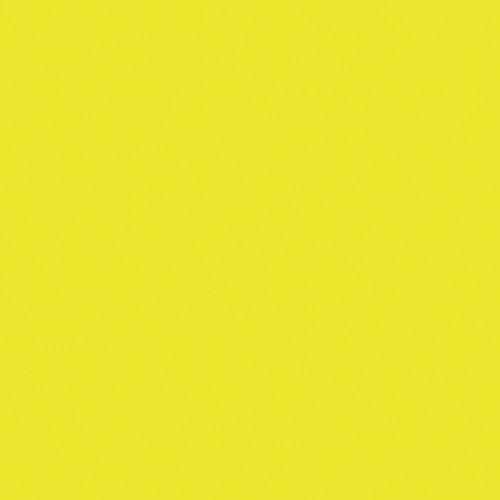 Rosco Fluorescent Lighting Sleeve/Tube Guard (#E100 Spring Yellow ,4' Long)