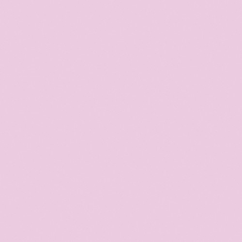 "Rosco #333 Blush Pink Fluorescent Sleeve T12 (48"")"