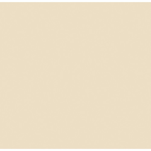 "Rosco #3408 RoscoSun 1/2 CTO Fluorescent Sleeve T12 (48"")"