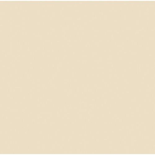"Rosco #3409 RoscoSun 1/4 CTO Fluorescent Sleeve T12 (48"")"