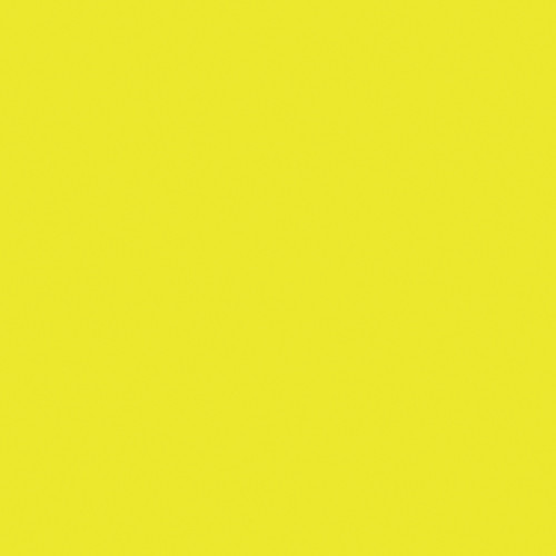 Rosco Fluorescent Lighting Sleeve/Tube Guard (E-Colour #E100 Spring Yellow, 4'  Long)