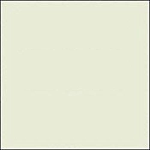 Rosco E-Colour #E278 1/8 Plus Green Fluorescent Lighting Sleeve/Tube Guard (4' Long)