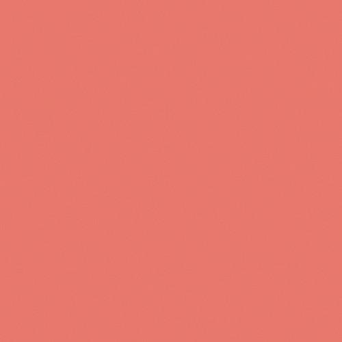 Rosco RoscoSleeve #3310 Fluorofilter (T5, 5')